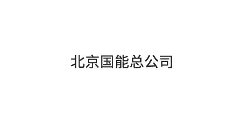 北京国能总公司